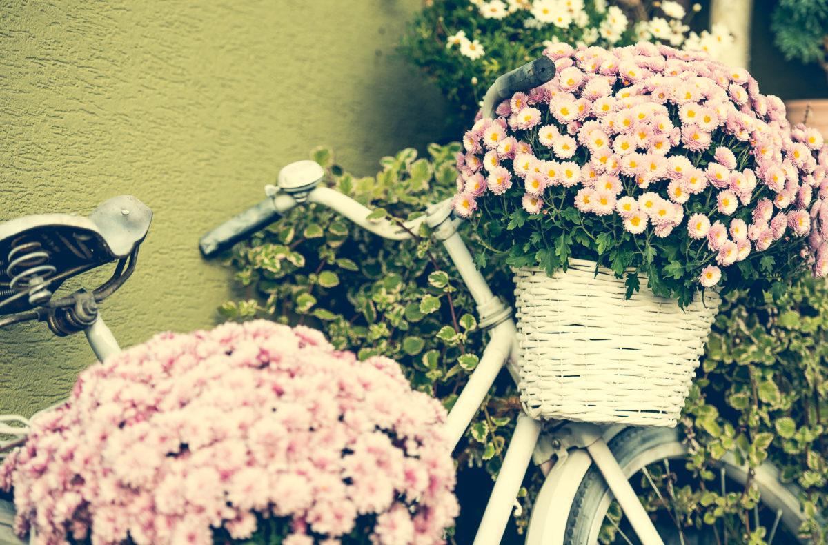 Decorare-lo-spazio-esterno-con-fiori-e-piante